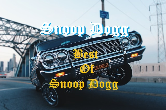 『SNOOP DOGG/BEST OF SNOOP DOGG』レビュー