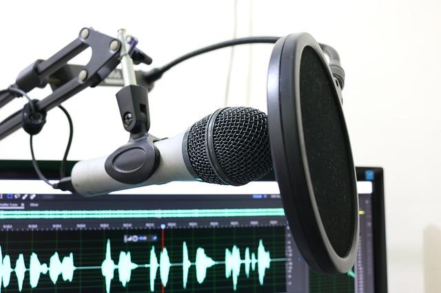 microphone&daw