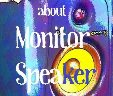about_Moniter Speaker02